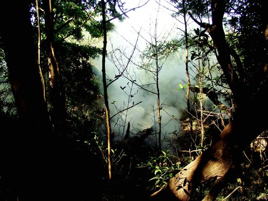 Hacienda Guachipelin: des fumerolles dans la foret