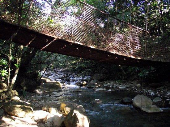 Hacienda Guachipelin: petit pont suspendu a l entrée du parc