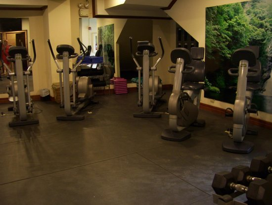 Holiday Inn San Jose Downtown Aurola : gym