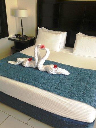 Reef Oasis Blue Bay Resort: Swans
