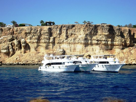 Reef Oasis Blue Bay Resort : Tiran Island snorkelling site - VIP Red Sea day trip
