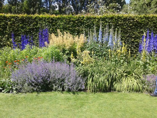 Anglesey Abbey: More flowers