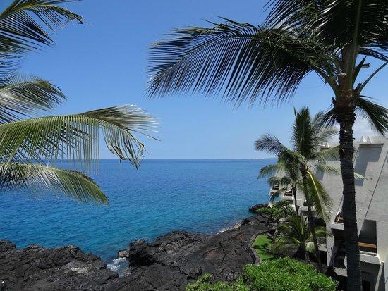 Sheraton Kona Resort & Spa at Keauhou Bay : Vue de la seaview room...une vraie seaview !