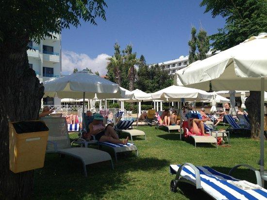 Iliada Beach Hotel: Территория при отеле