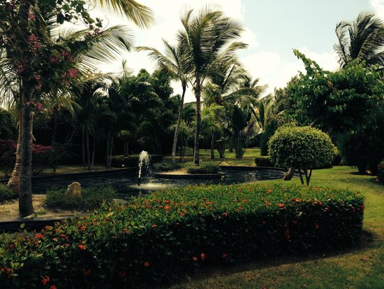The Reserve at Paradisus Palma Real: The gardens near our room.
