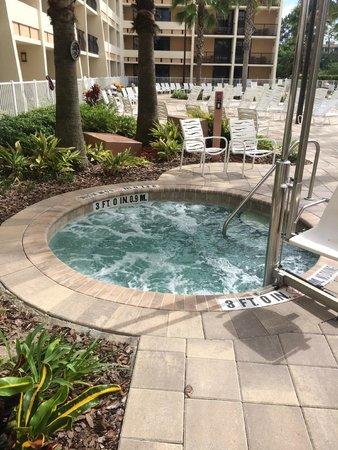 Holiday Inn Orlando – Disney Springs Area: The Jacuzzi