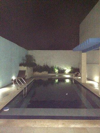 Hotel Socaire: Бассейн