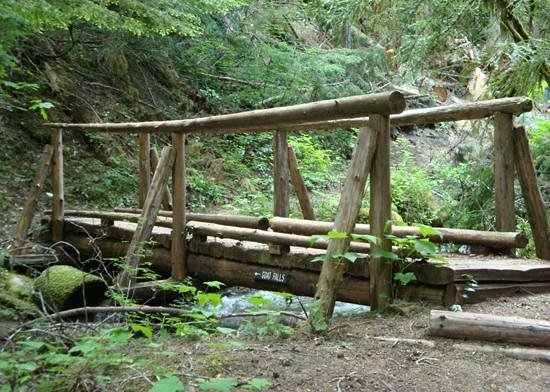 Alta Crystal Resort at Mount Rainier: One of many wooden bridges in the national forest