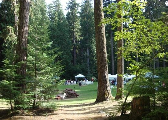 Alta Crystal Resort at Mount Rainier: A view of the recreation field, set up for a wedding