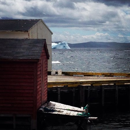 View from Rugged Beauty Boat Tours with a bonus iceberg!