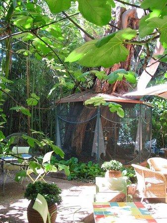 Hotel Windsor Nice : jardin et cage des perroquets