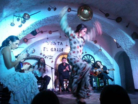 Venta El Gallo : spettacolo flamenco
