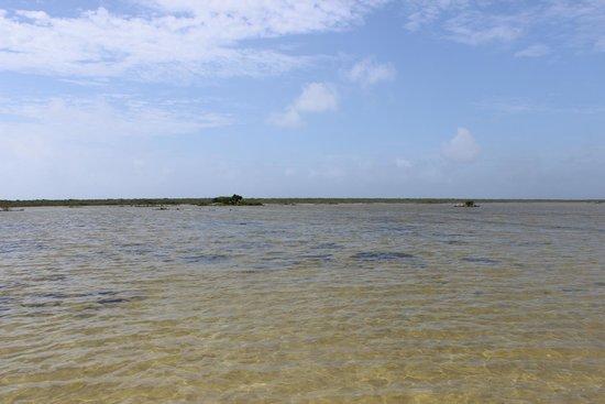 Punta Molas Faro (Molas Point Lighthouse): rio de la plata