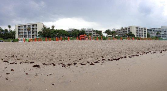 Four Seasons Resort, Palm Beach: View from ocean