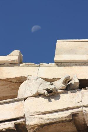Acropole : Acropolis relief