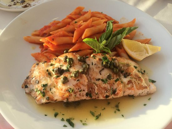 Casanova by the Sea: Special of Red Snapper with Penne Side