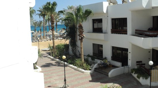 Marlin Inn Azur Resort: Вид из окна.