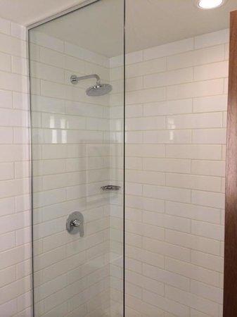 The Godfrey Hotel Chicago: shower