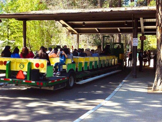 Yosemite Valley Lodge : экскурси