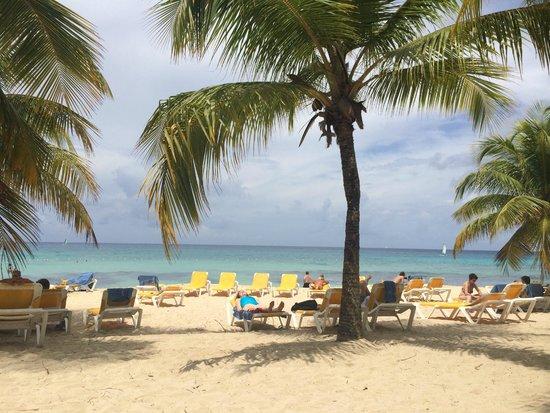 Viva Wyndham Dominicus Palace: Beachside lounging