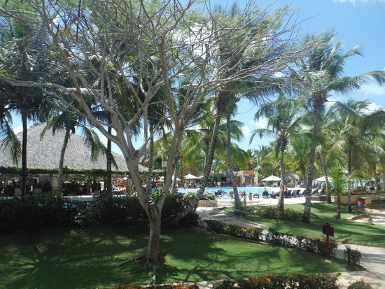 Viva Wyndham Dominicus Palace: The Pool at the Palace Side