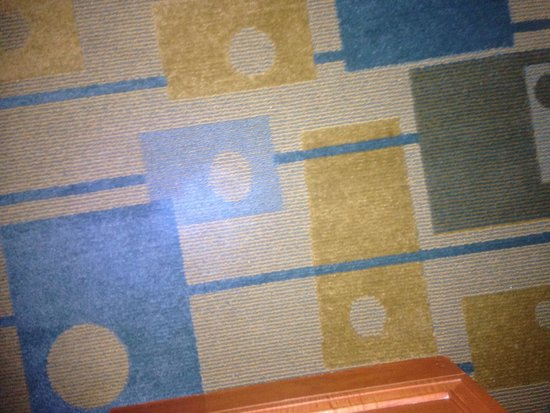 La Quinta Inn & Suites USF (Near Busch Gardens): Bloody Carpet non visible with out a black light