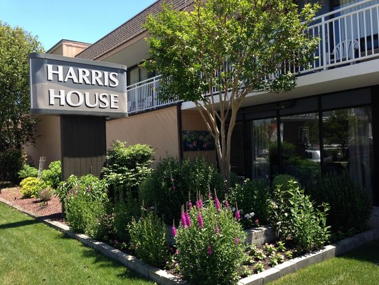 Harris House Motel: Ocean Ave. Entrance