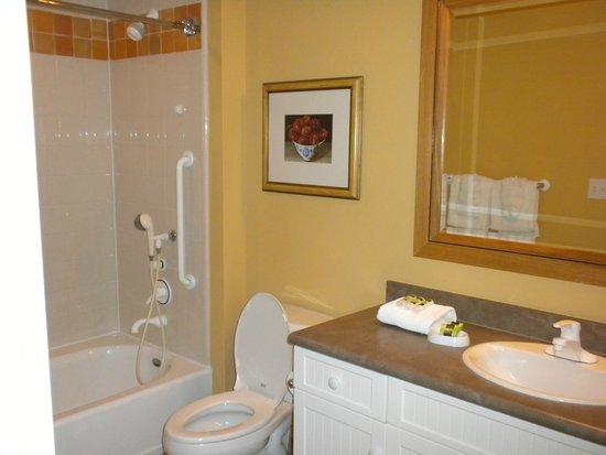 Marriott's Willow Ridge Lodge: Bathroom