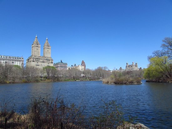 Free Tours by Foot: Central Park