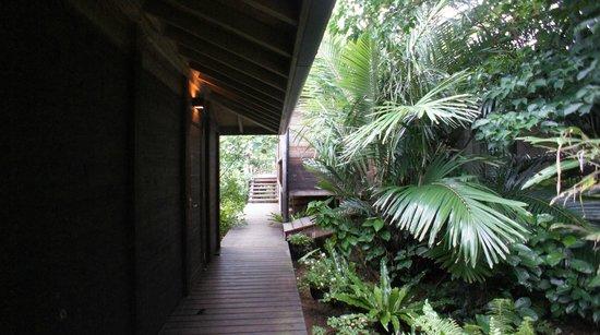 Nilaina Resort : 南国の植物がそばにある廊下