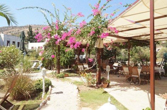 Hotel Datca Turk Evi: dis terasin bi kamsani