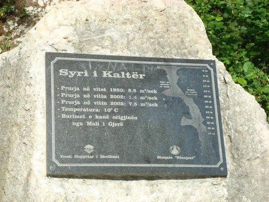 Blue Eye (Syri Kalter) : info