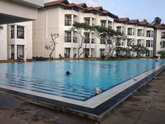 Club Hotel Dolphin : Pool