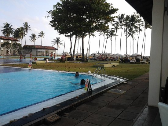 Club Hotel Dolphin : Pool