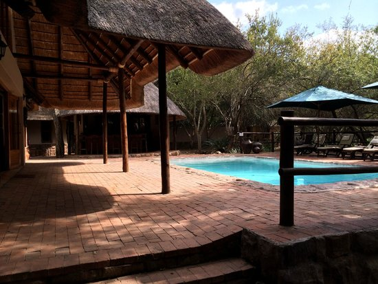 Serondella Game Lodge: Pool was nice, although too cold to swim in winter