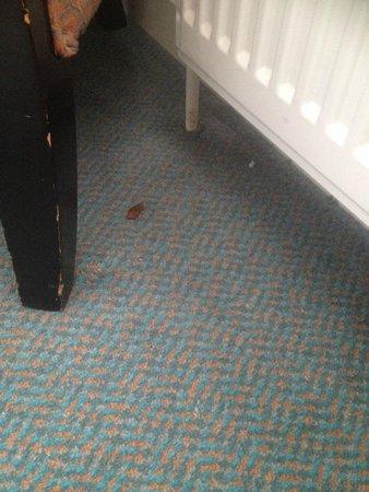 Britannia Ashley Hotel: Food and dirt left on carpets