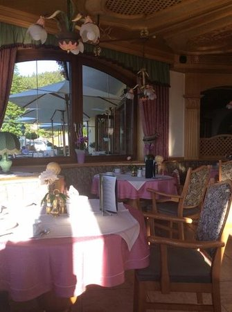 Hotel Restaurant Ennstalerhof : Viewing the terrace from inside the restaurent