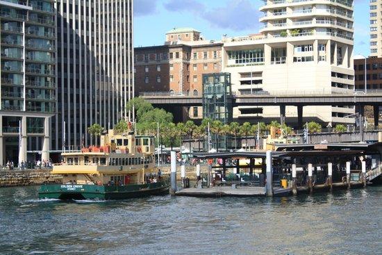Manly Ferry : Circular Quay