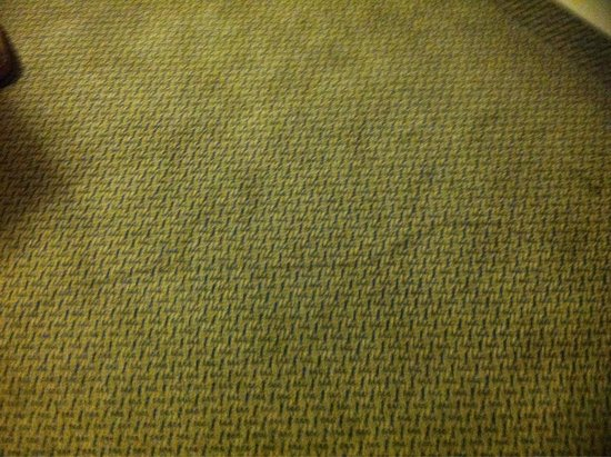 La Quinta Inn & Suites Tampa Fairgrounds - Casino: Wrinkled and stained carpet