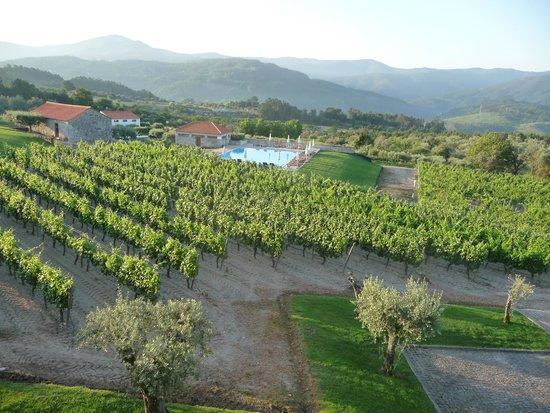 Pousada de Vila Pouca da Beira: View from room