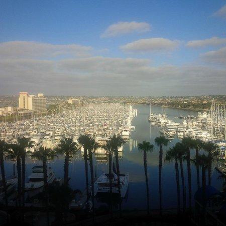 The Sheraton San Diego Hotel & Marina : Marina view