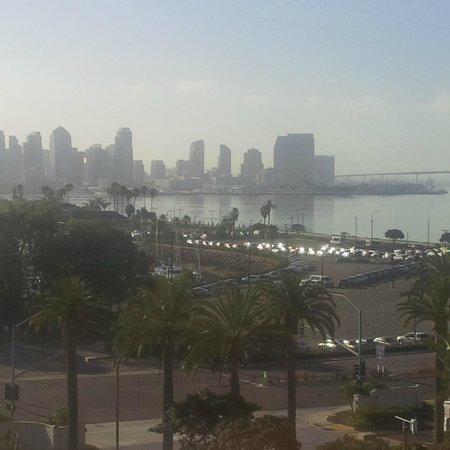 The Sheraton San Diego Hotel & Marina : Downtown View