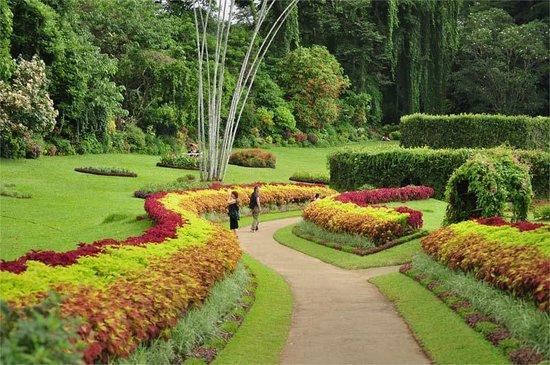 Royal Botanical Gardens: flower beds
