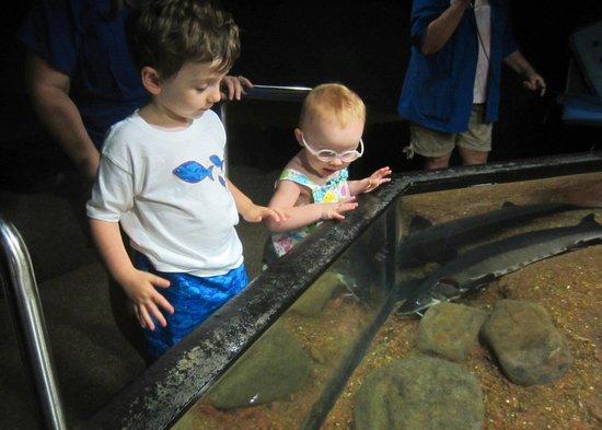 Tennessee Aquarium : Connor and Karson