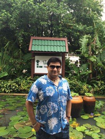 Patong Resort: Pool area