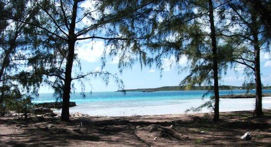 Current Cut : Beach near the cut tip.