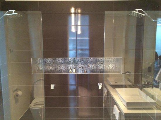 Aqua on Kepler: Super Bathroom - see the 2 separate showers!