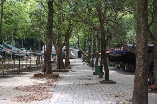 Perfume Pagoda : Path To the Temple