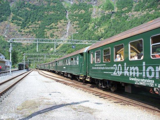 The Flam Railway : treno in stazione