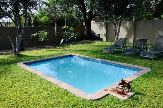 Villa Violet : Lovely small pool
